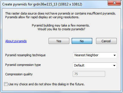 Figure 10-5 ArcMap Build Pyramids dialog box