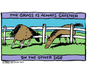 Figure 2-0 Grass is Always Greener on Other Side