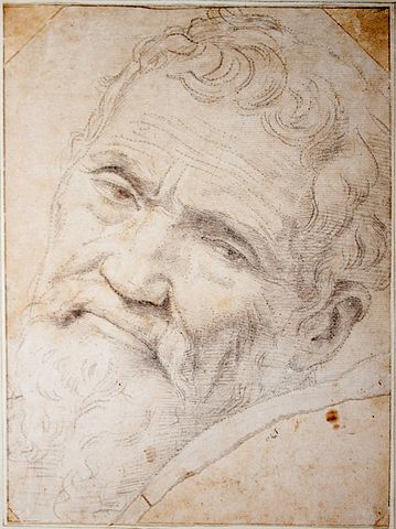 Figure 1-0 Michelangelo Portrait