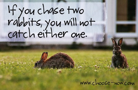Figure 1-0 If you chase two rabbits, you won't catch one
